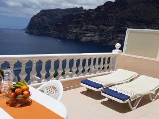 SUPERB APARTMENT WITH SPECTACULAR SUN TERRACE. 2 - Acantilado de los Gigantes vacation rentals