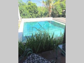 Villa Sarj'a - The Duck - Canggu - Canggu vacation rentals