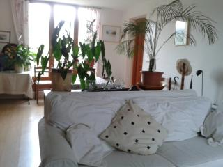 Nice Condo with Internet Access and Dishwasher - Bize-Minervois vacation rentals