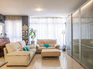 Dúplex en el centro de Castellón - Castellon Province vacation rentals
