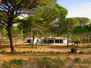 Luxury  Monte Verde Villa in Comporta - Comporta vacation rentals
