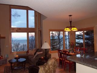 Luxury town home overlooking Lake Superior and within 10 miles of 3 state parks - Beaver Bay vacation rentals