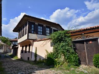 Nice Villa with Internet Access and A/C - Karlovo vacation rentals