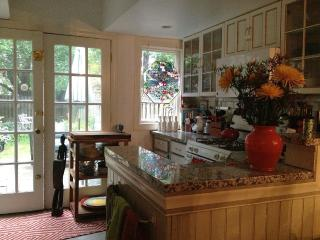Charming historical house with private backyard - Washington DC vacation rentals