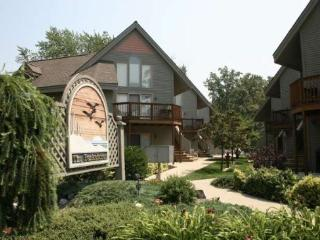 Parkshores 4 - South Haven vacation rentals