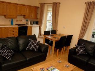 Derg Valley Apartments (sleeps 4) - Castlederg vacation rentals
