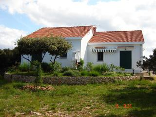 House Movica , Pag - Mandre - Mandre vacation rentals