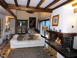 The Little Mountain Chalet - Morzine-Avoriaz vacation rentals