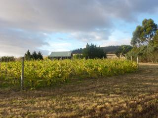 Spacious 2 bedroom cottage amongst the vines. - Richmond vacation rentals