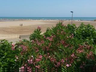 Très bel appartement face à la mer ! - Saint-Pierre-sur-Mer vacation rentals