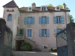 4 bedroom House with Internet Access in Mercurey - Mercurey vacation rentals