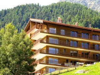 Chalet Les Rahâs 06 - Grimentz vacation rentals