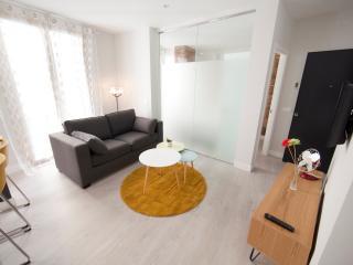 Flower 1 bedroom apartament 2 Malaga - Malaga vacation rentals