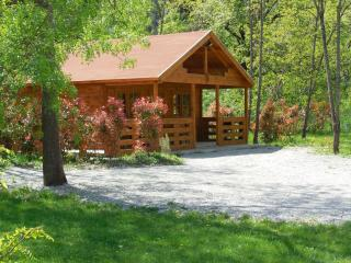 Nice Chalet with A/C and Satellite Or Cable TV - Coux vacation rentals