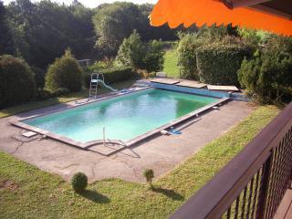 Glorious Large House near Geneva - Monnetier-Mornex vacation rentals