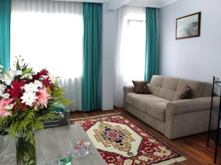 50 meters 2 d Blue mosque & center - Istanbul vacation rentals