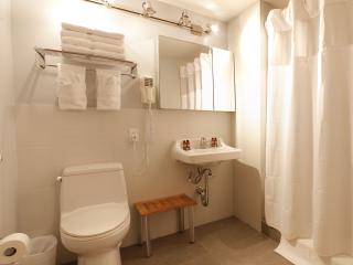 ZEN CHIC Queen Studio $179/NIGHT SUMMER SPECIAL! - New York City vacation rentals