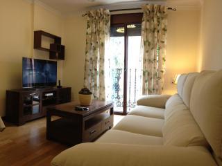 Apartment in Las Palmas de Gran Canarias, 102349 - Las Palmas de Gran Canaria vacation rentals
