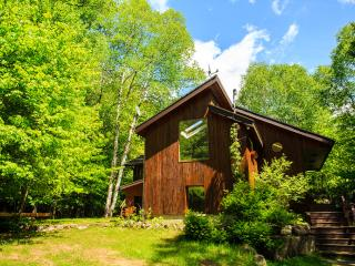 Perfect Chalet with Internet Access and Central Heating - Lac-Superieur vacation rentals