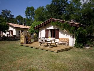Cozy 2 bedroom House in Belin-Beliet - Belin-Beliet vacation rentals
