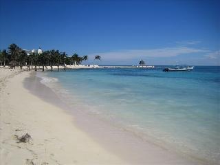 Luxurious Huge Ocean View Villa! - Playa Paraiso vacation rentals