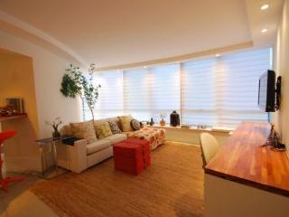 Luxurious 2 bedrooms 2 bathrooms apt in Barra - Fantastic View! - Itanhanga vacation rentals