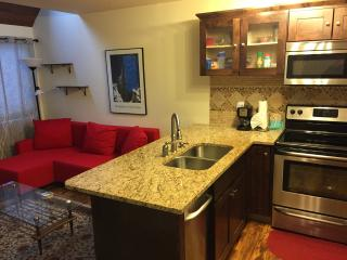 Retreat by the River, Sleeps 2 (4) Free Wifi, W/D - Silverthorne vacation rentals