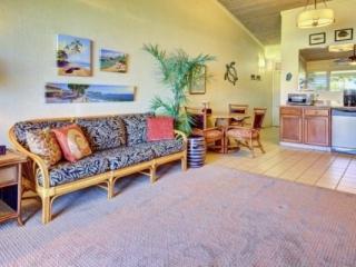 Terrific Ocean Views - Napili Shores Studio G-257 - Napili-Honokowai vacation rentals