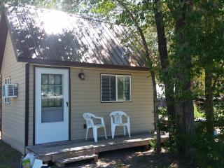 Nice Cottage with Deck and A/C - Junction vacation rentals