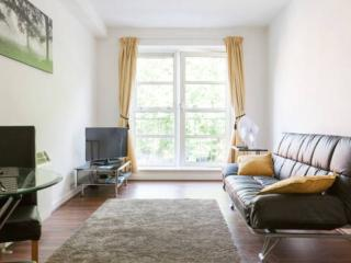 very best city centre location - Dublin vacation rentals