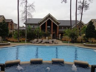 Georgeous 1Bedroom/1Bath Condo The Woodlands #6106 - The Woodlands vacation rentals