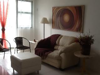 Cozy 2br Apartment Barra da Tijuca i03.032 - Lumiar vacation rentals