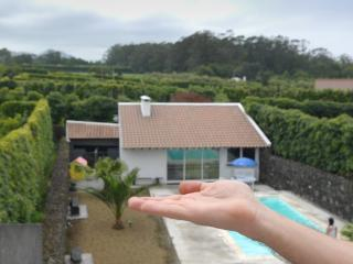 1 bedroom Condo with Deck in Rabo de Peixe - Rabo de Peixe vacation rentals