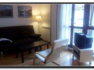 Cozy 2 bedroom Condo in Biescas with Linens Provided - Biescas vacation rentals
