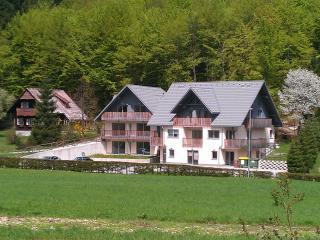 2 bedroom Condo with Internet Access in Ribcev Laz - Ribcev Laz vacation rentals