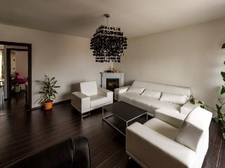 2 bedroom Condo with Internet Access in Cluj-Napoca - Cluj-Napoca vacation rentals