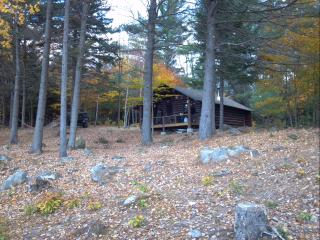 Secluded Rustic Log Cabin-HUGE mountain views! - Andover vacation rentals