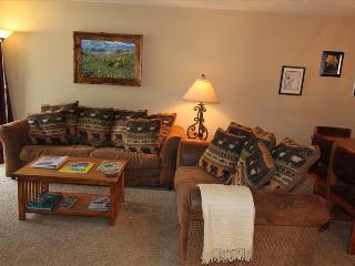 104A Chateaux Condo's - Crested Butte vacation rentals
