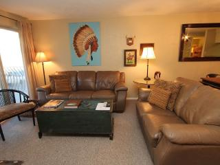 Location! Steps to Base Area 6th Nt Free! Pool/Hot tub! - Crested Butte vacation rentals