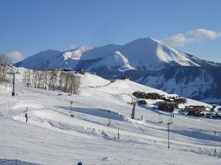 Crested Mtn 2 BR 'TRUE' Ski In/Out Condo. Hot Tub. At main base area.  Town shuttle steps away. - Crested Butte vacation rentals