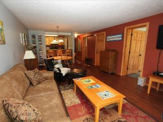 Comfortable 2 BR at the Chateaux. Pool, hottub, sauna, shuttle! - Crested Butte vacation rentals