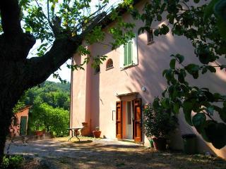 Rubbiano House casale ad 1km dal centro - Spoleto vacation rentals