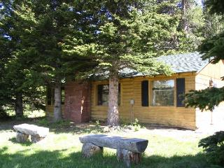 Gorgeous 4 bedroom Cabin in Estes Park - Estes Park vacation rentals