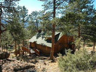 Perfect Cabin with Deck and Television - Estes Park vacation rentals