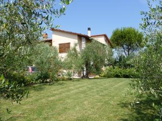 Casa Degli Olivi Cetona , Siena Tuscany - Cetona vacation rentals