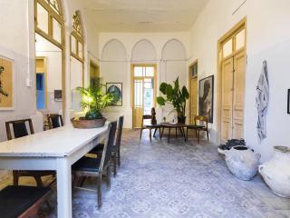 Large Turkish house in Jaffa, near Flea market - Jaffa vacation rentals
