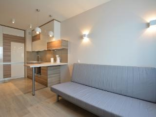 Perfect 2 bedroom Krakow Apartment with Internet Access - Krakow vacation rentals