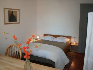 Romantic 1 bedroom Gite in Gerstheim - Gerstheim vacation rentals