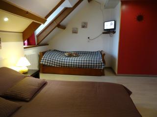 Datcha Bourguignonne MACONGE (chambre 3) - Maconge vacation rentals