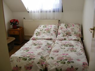 2 bedroom flat for 6 w/ free bikes - Debrecen vacation rentals
